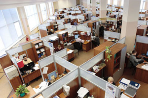 office_workers_400